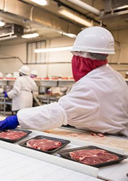 Food Manufacturing & Processing