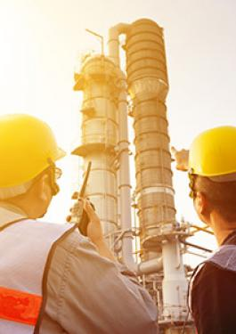 Petrochemicals Inspection and Testing